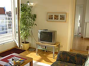 living room with tv, entrance to the terrace